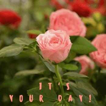 Открытка It's your day!