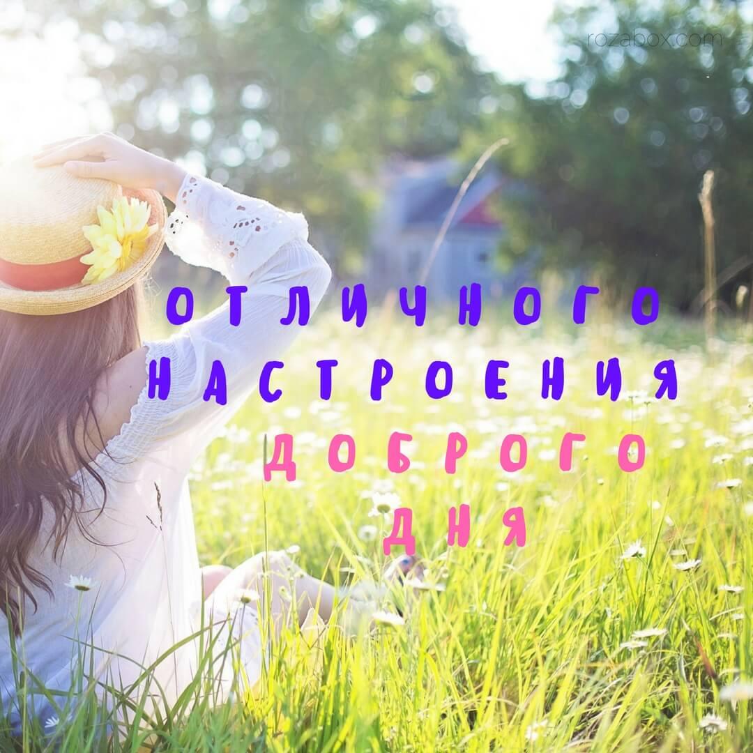 открытка с пожеланием доброго дня