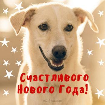 открытка счастливого Нового года