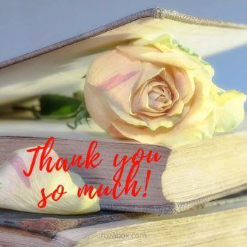 открытки на каждый день спасибо