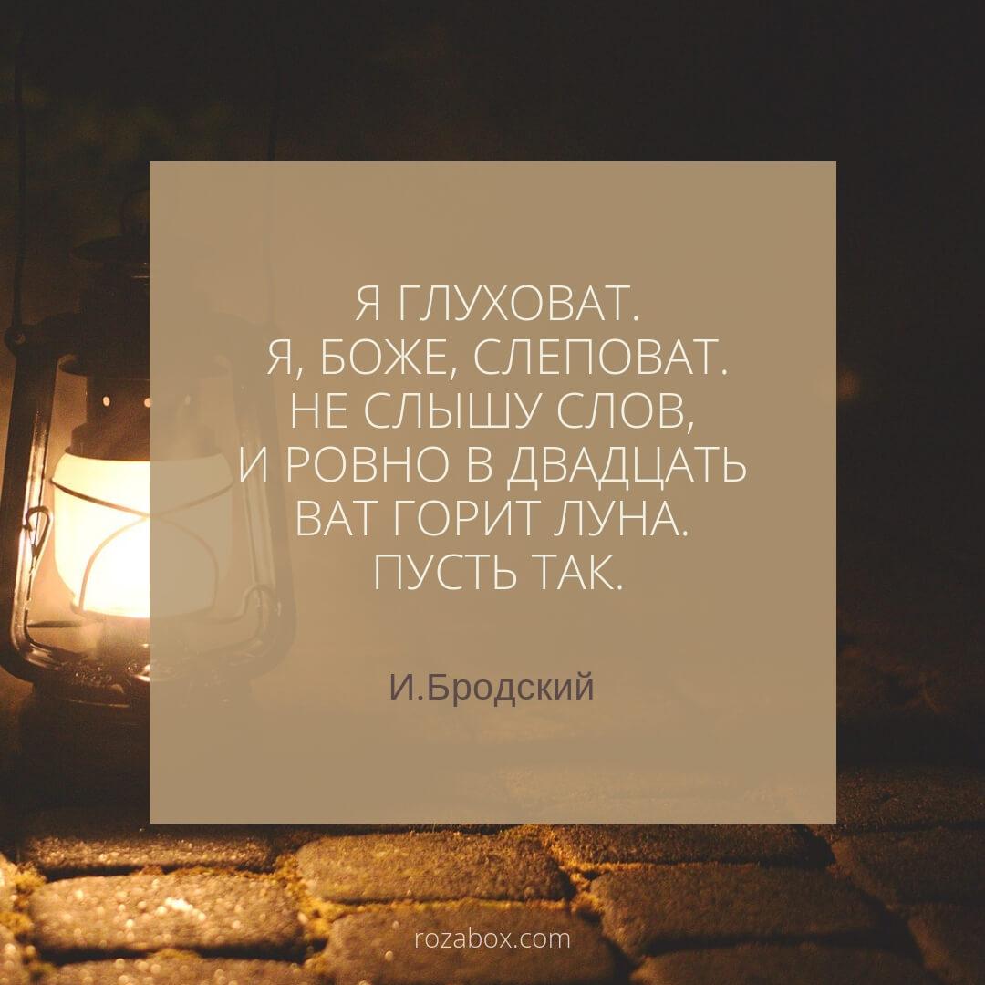 цитаты из песен Земфиры
